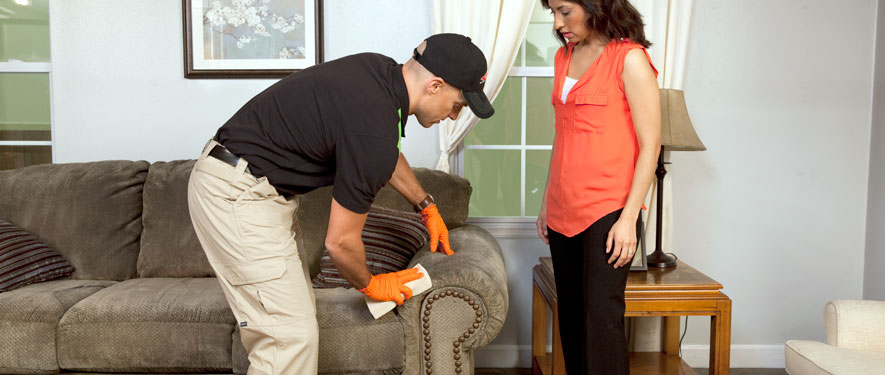 Mountain View, CA carpet upholstery cleaning